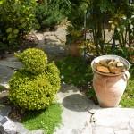 Entchen in unserem Garten